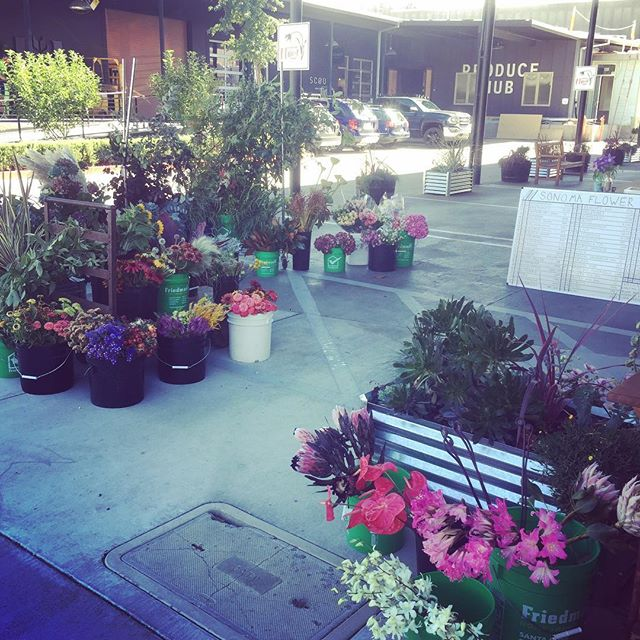 It's a beautiful day in the Barlow and we are set up outside! Won't you be, please won't you be our neighbor? Hi neighbor! #slowflowers #locallygrown #lovethyneighbor