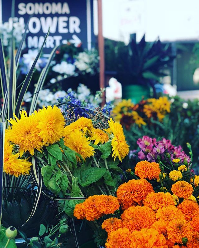 So many unique and beautiful flowers and greens to choose from! Come see us outside in the Barlow until 4pm! #teddybearsunflower  #locallygrown #slowflowers