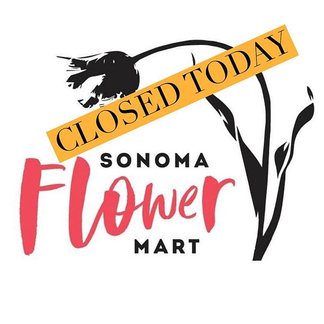 We will be closed today due to poor air quality. Wear your masks & stay safe! Our hearts are with folks affected 🙁 . If you have a special order to pick up, contact California Sister for assistance 707-827-8090