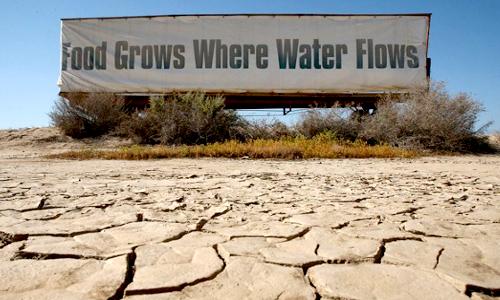 droughtFI.jpg