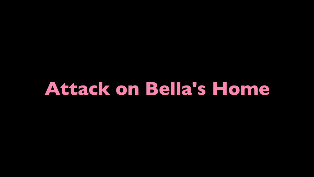 Bella and company have an unwanted guest.
