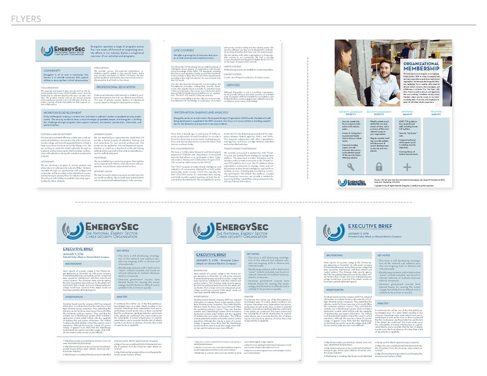 Layout options for company flyers: company outreach, organizational membership, and executive brief.