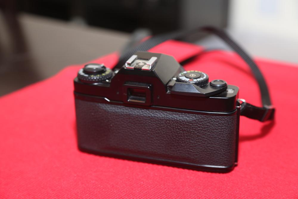 HD5A6815.JPG