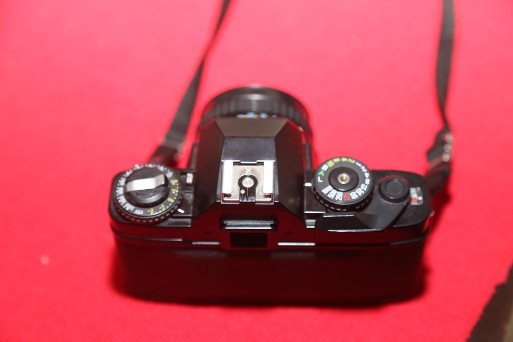 HD5A6816.JPG