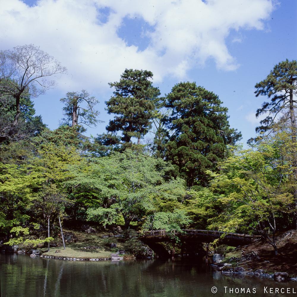 Japan022tk.jpg