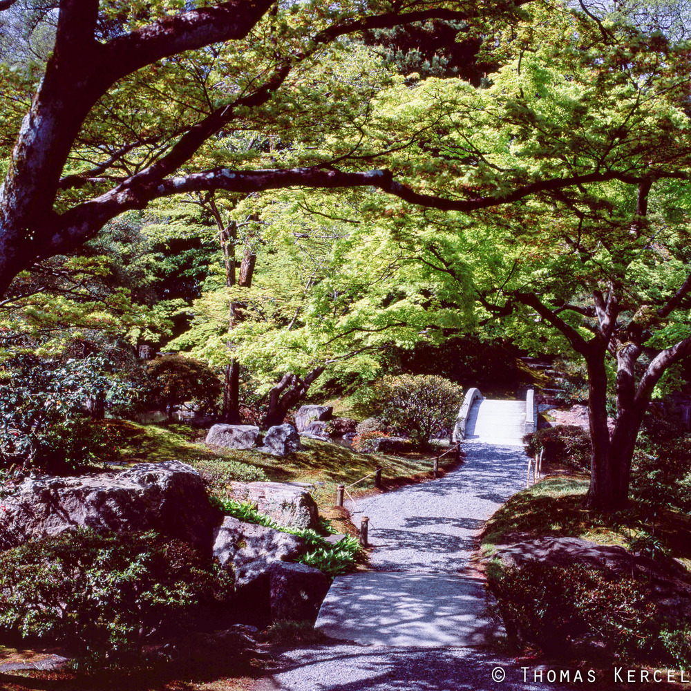 Japan023tk.jpg