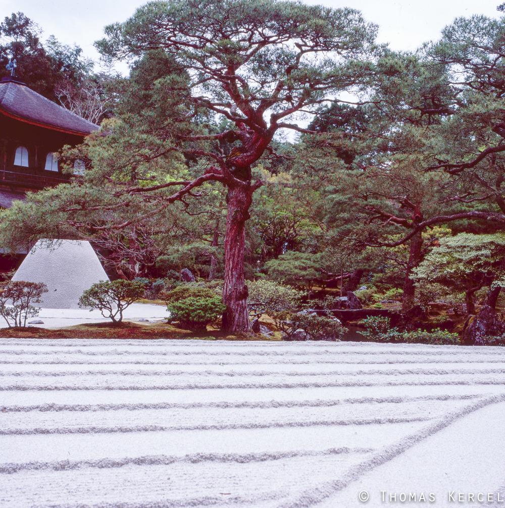 Japan014tk.jpg