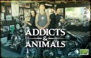 AddictsAndAnimals_187x120.jpg