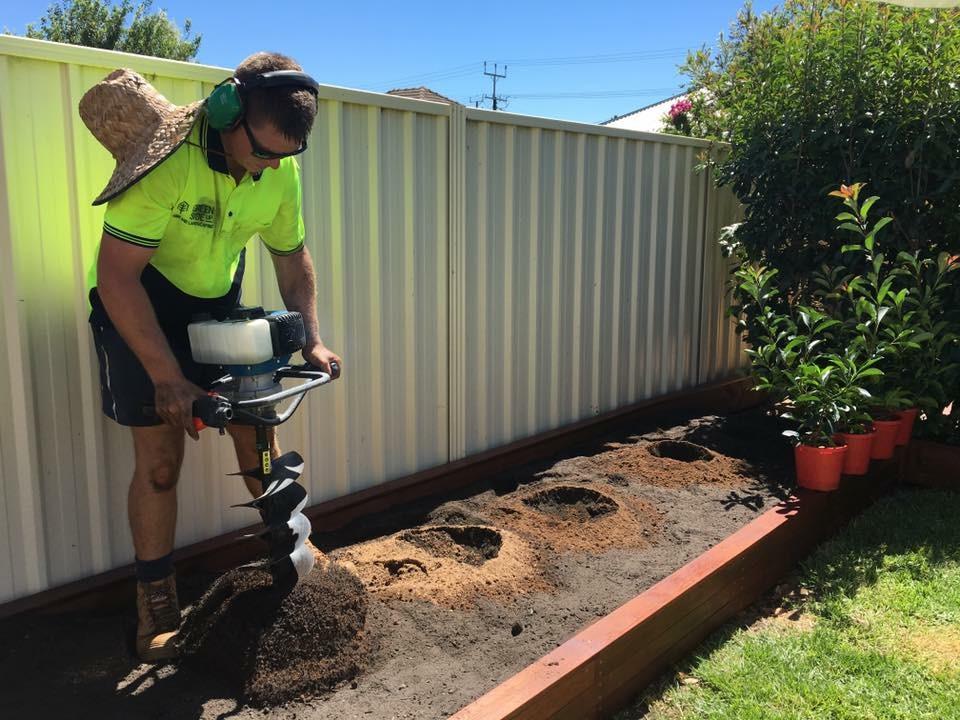 Planting in garden box.JPG