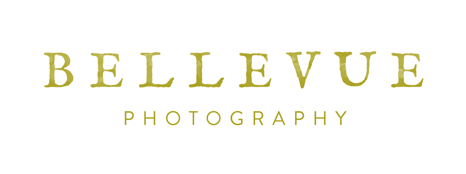 Bellevue Photography