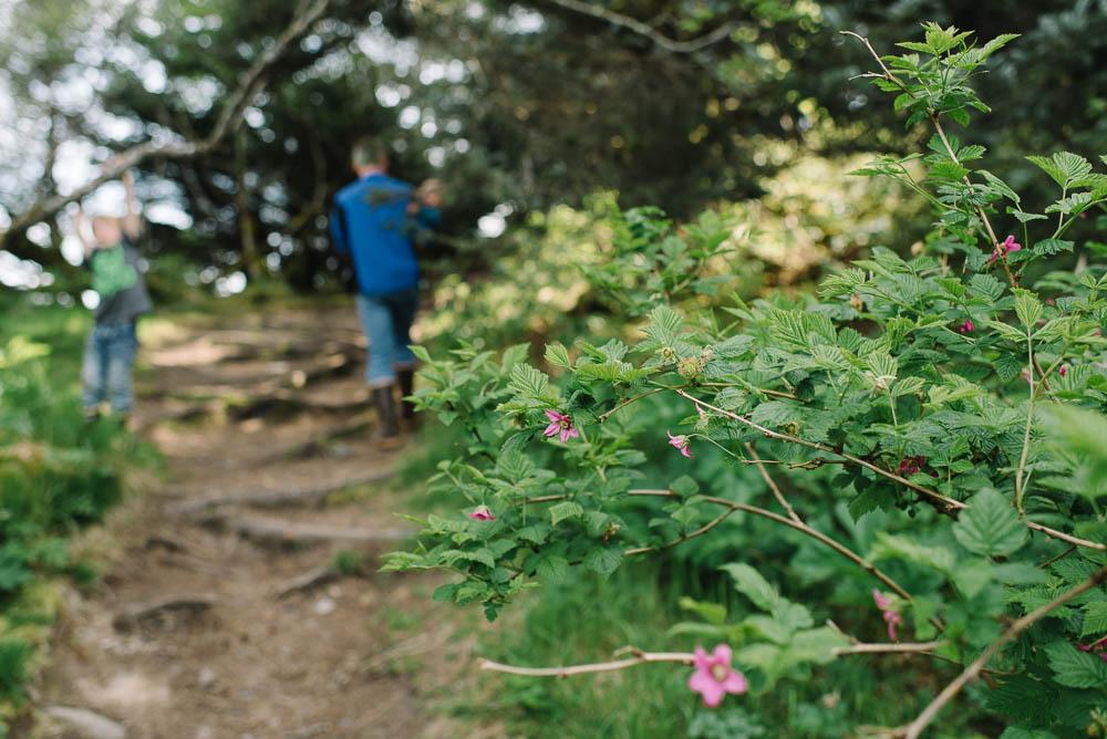 breannapeterson.com-1-53.jpg
