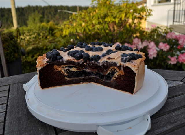 Cake that looks like a blueberry pie