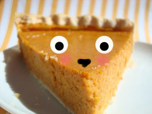 recipe: pumpkin pie with condensed milk vs evaporated milk [4]