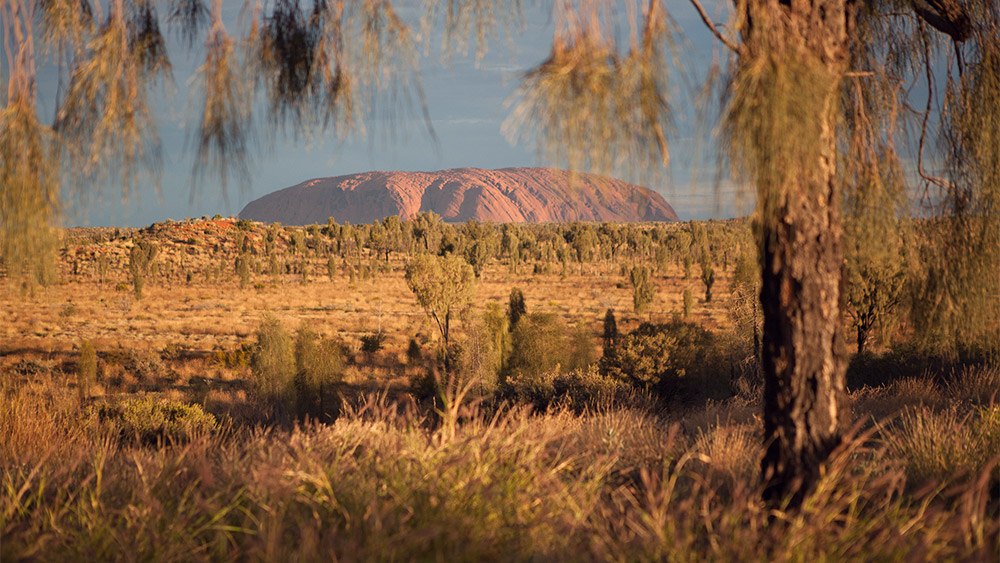 Uluru-Kata Tjuta National Park / 35mm