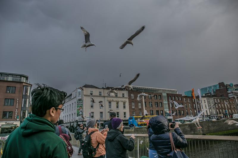 1916 Easter Rising Dublin 2016-4809.jpg