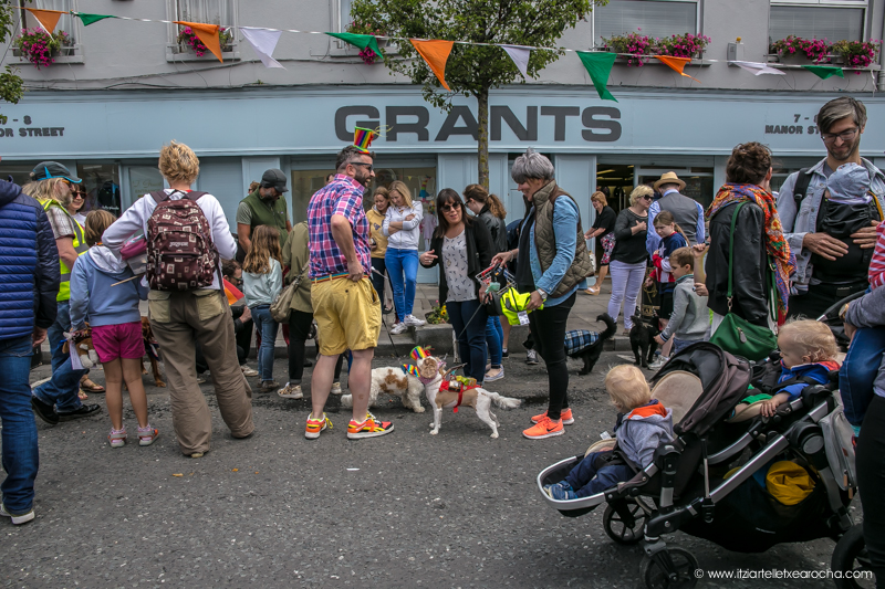 Pride and Stoneybatter Festival 2017-3433.jpg