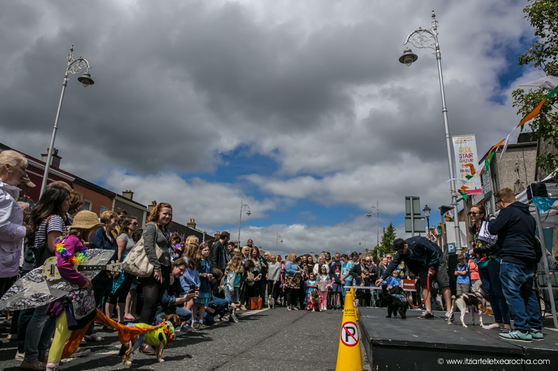 Pride and Stoneybatter Festival 2017-3451.jpg