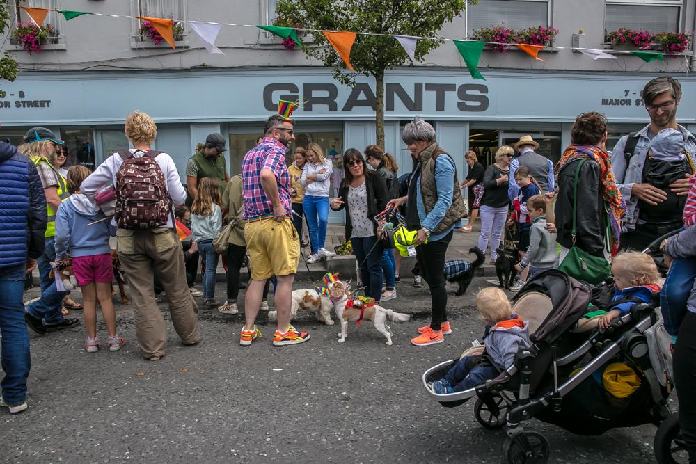Stoneybatter Festival, woofstock, Dublin 2017