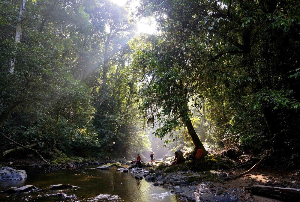 Vackraste platsen jag sett... Hart of Borneo