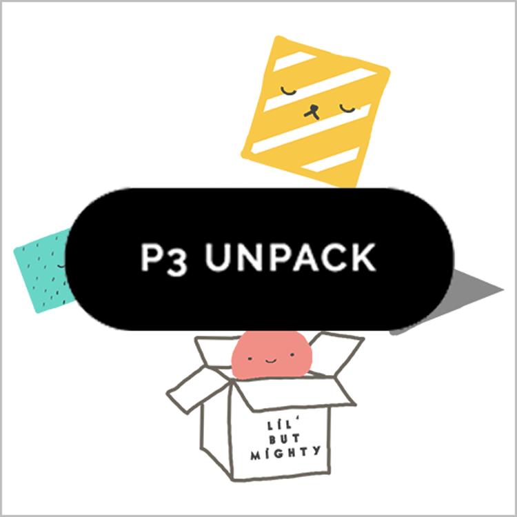 Primary 3 UNPACK PROGRAMME