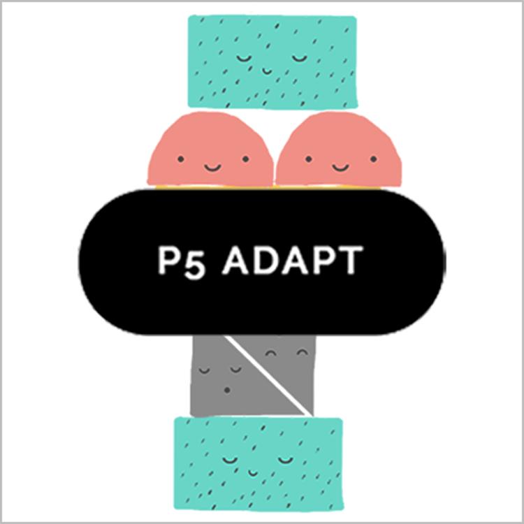 Primary 5 ADAPT PROGRAMME