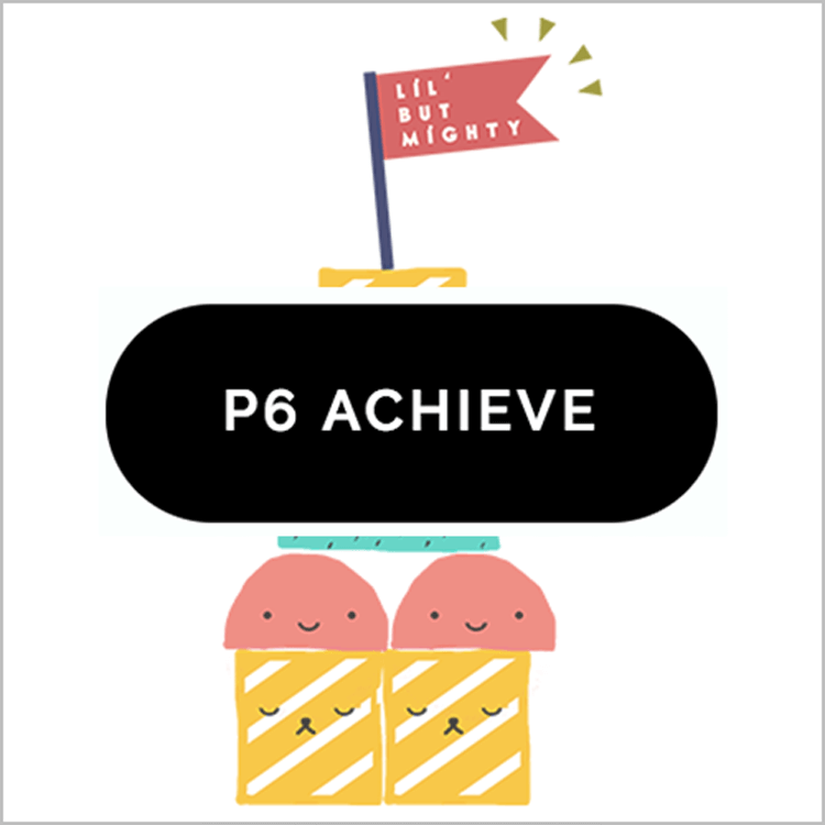 Primary 6 ACHIEVE PROGRAMME