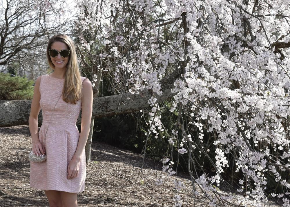 gilt edge | spring beginnings