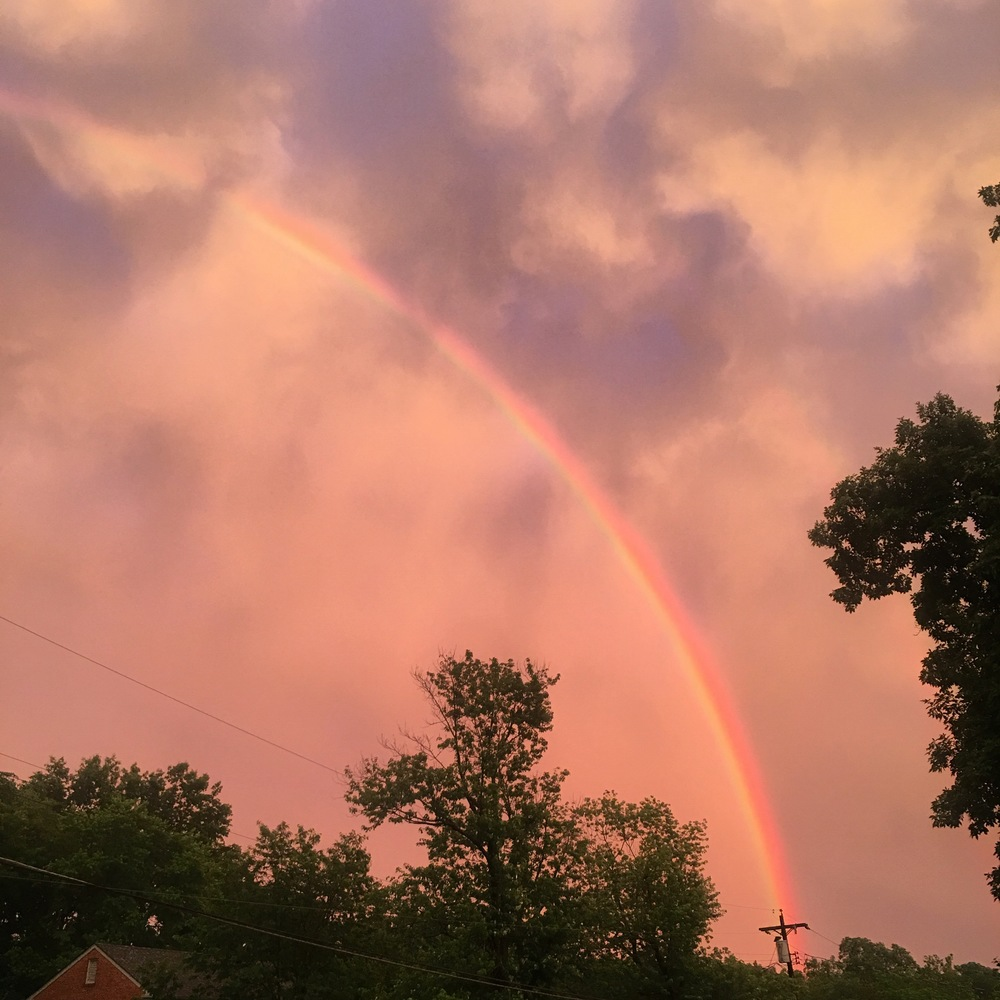 Prettiest rainbow after the craziest storm in Cincinnati 🌈