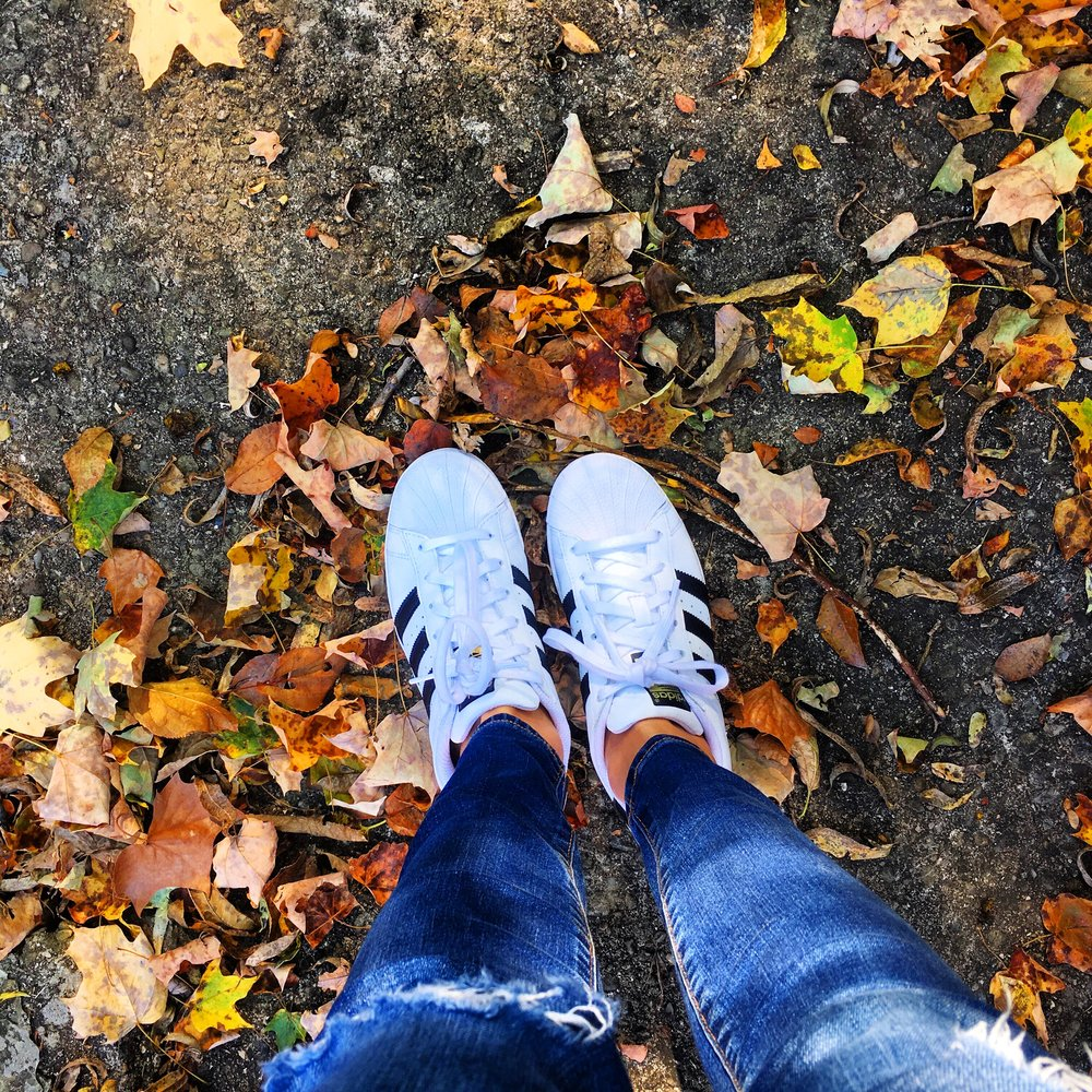 Superstars and fall leaves - Also, The Chainsmokers randomly commented on this photo, and I just about died // Sneakers, Jeans