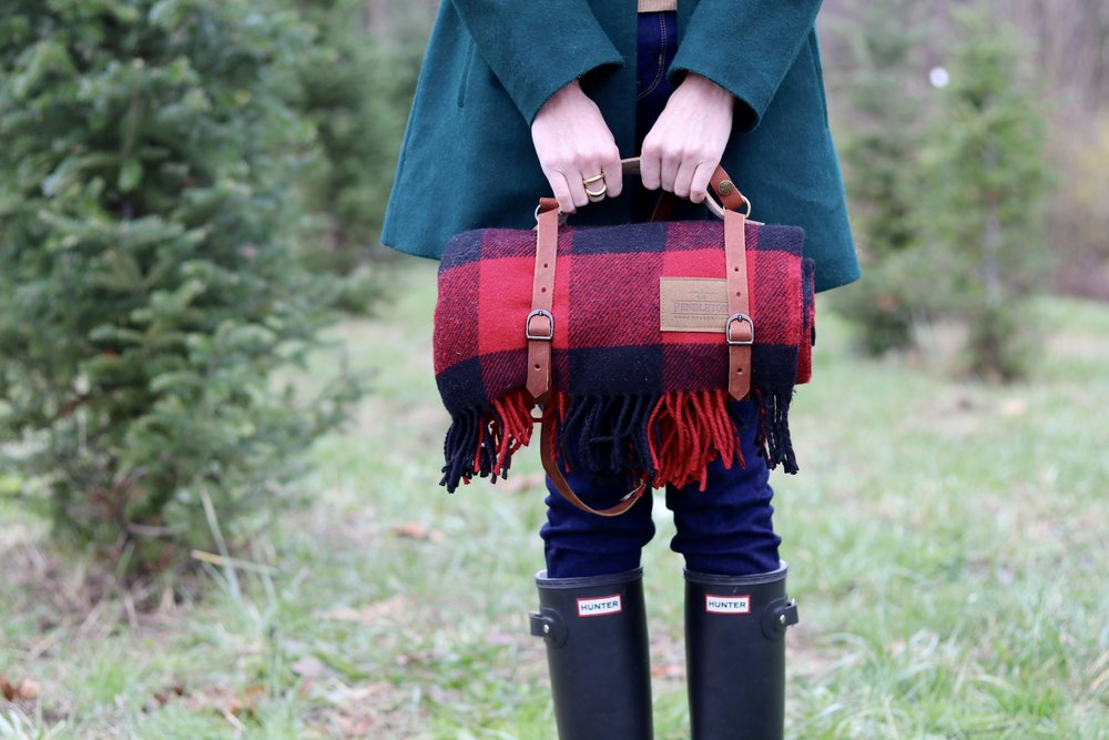 gilt edge | holiday picnic