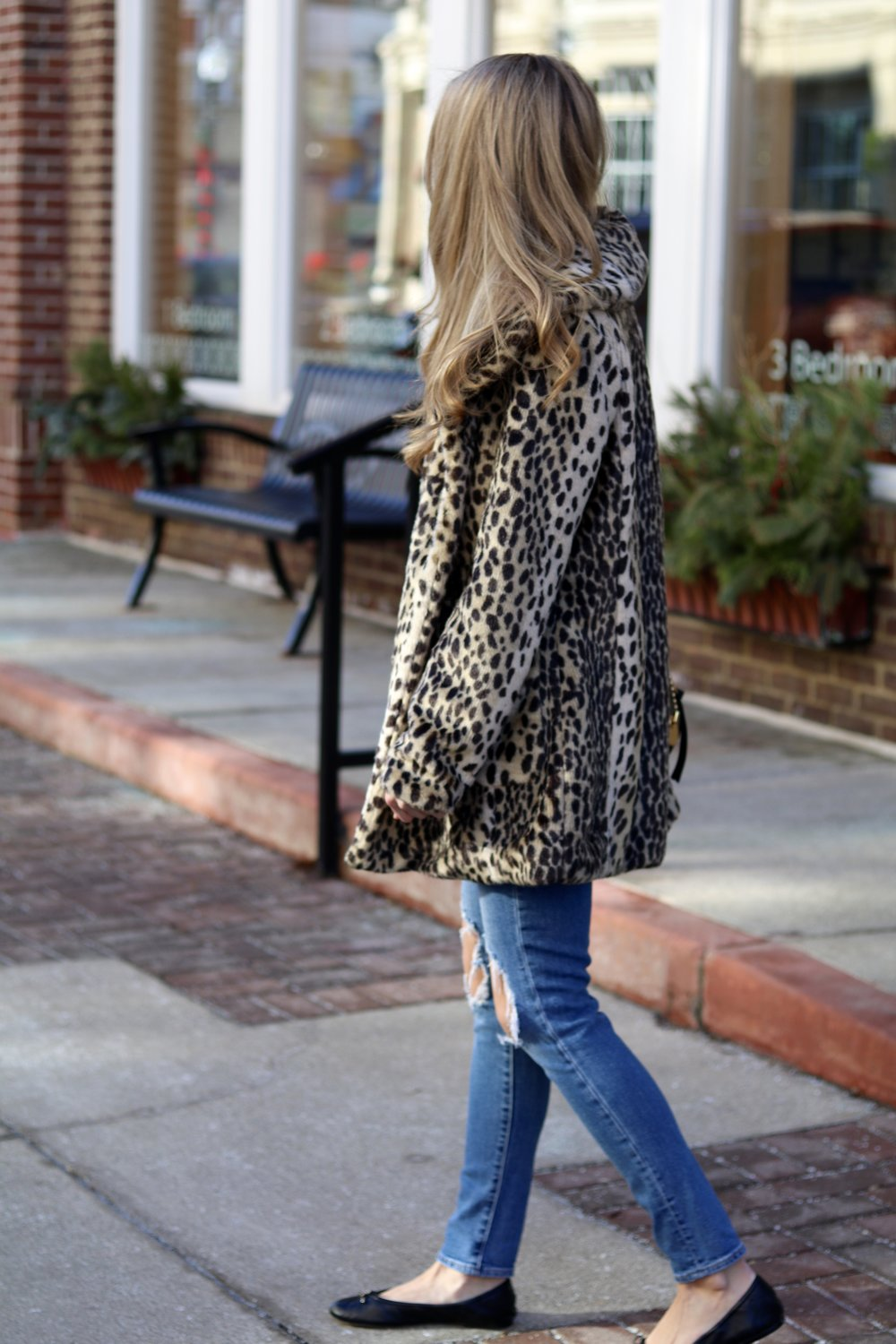 gilt edge | leopard & stripes