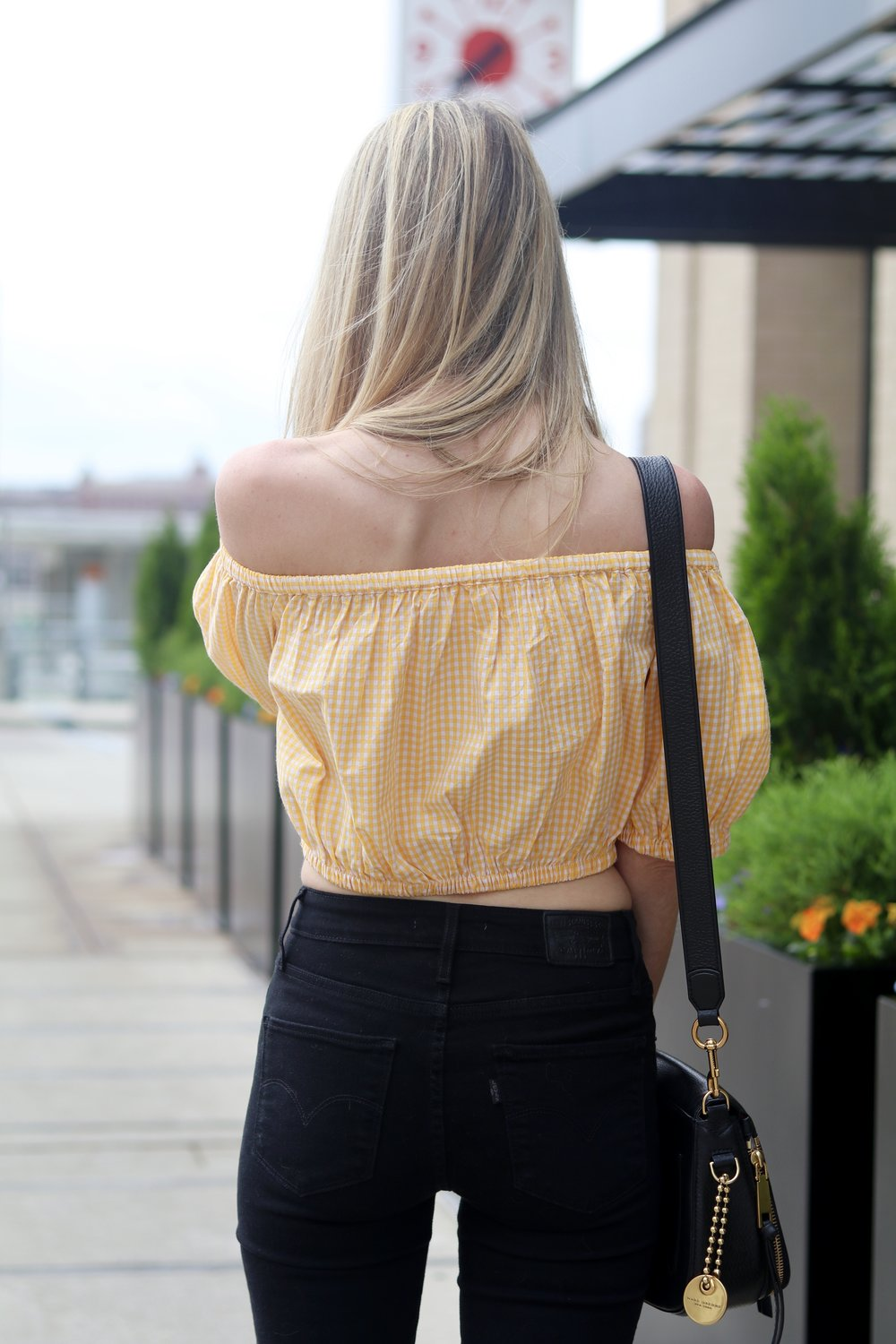 gilt edge | tied top