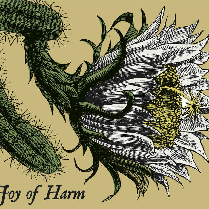 Joy of Harm