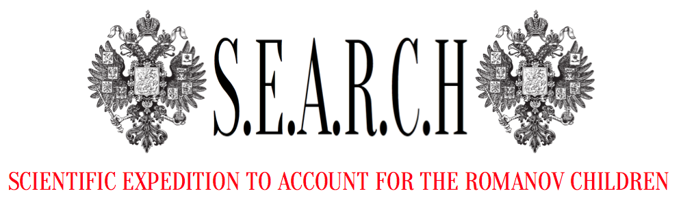 searchfoundationinc