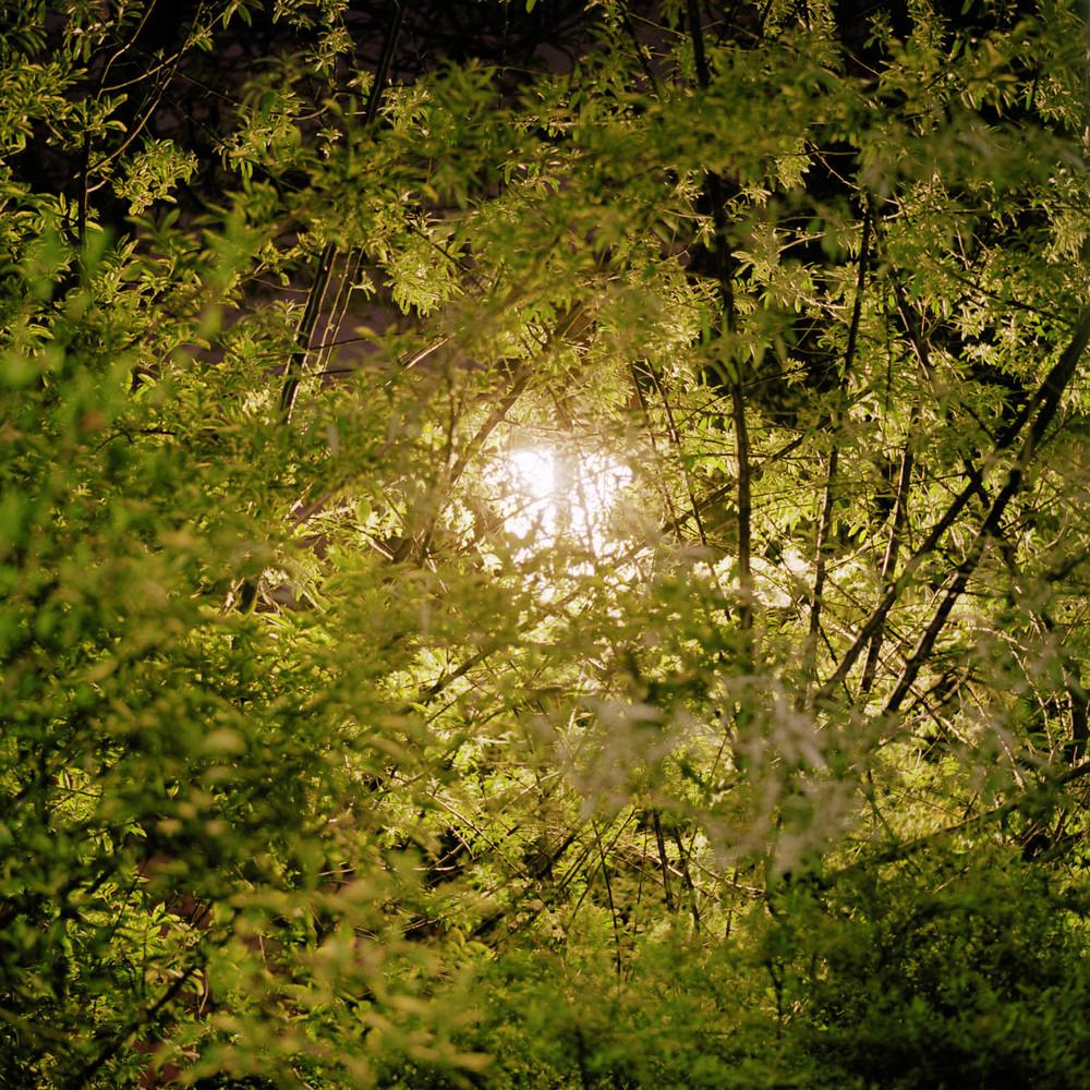 nocturnes-21.jpg
