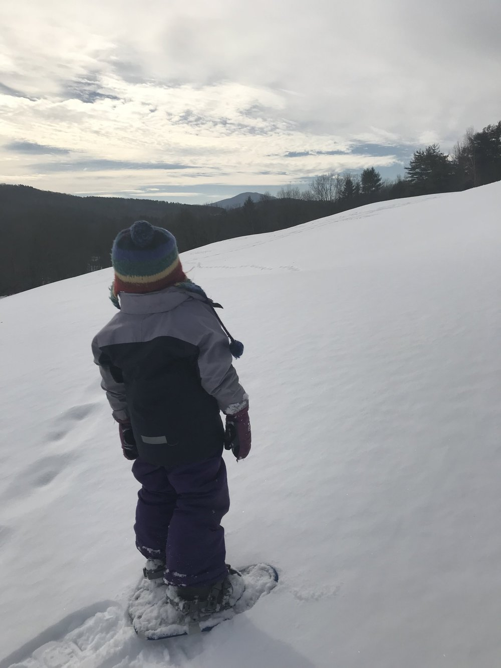 Reijo, age four, looking out at Mt. Ascutney from the top of the Sheep Pasture- a short snow shoe from our doorstep.