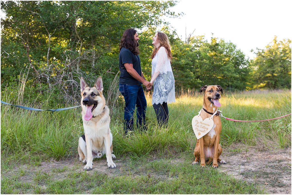 Couple pose with their two dogs for engagement photos in College Station, Texas - Jason & Melaina Photography - www.jasonandmelaina.com