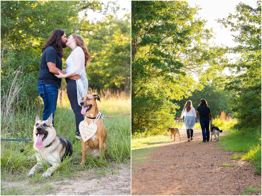 "A couple's dog wears a ""My Humans are getting married"" sign during an engagement session - Jason & Melaina Photography - www.jasonandmelaina.com"