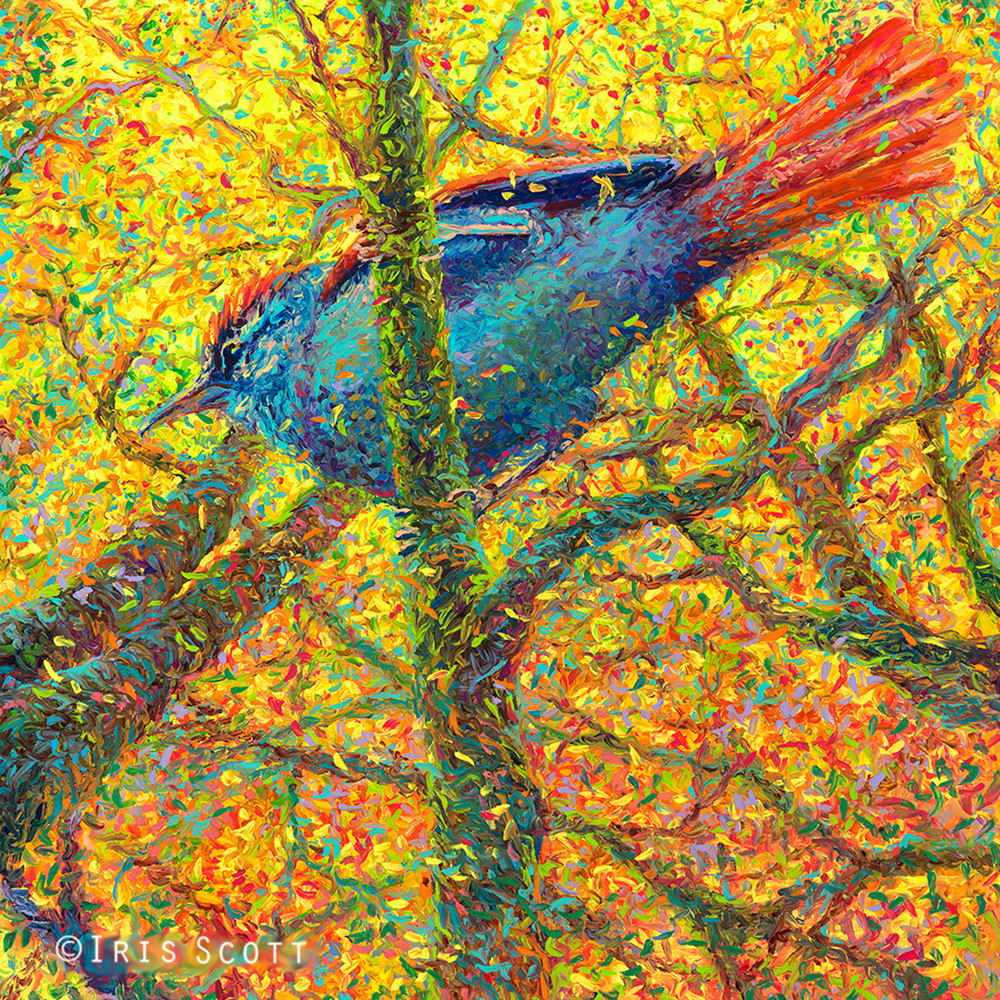 Yellow Blue Bird | 36x36in  Original SOLD |  Buy Prints  Iris Scott | Amazing Finger Paintings