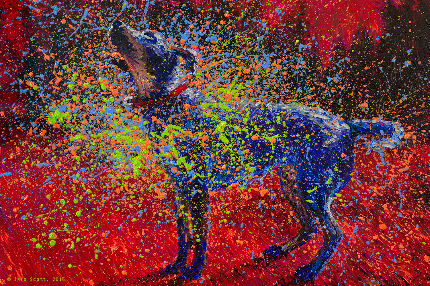 Shakin 39 dogs iris scott for How paint on canvas