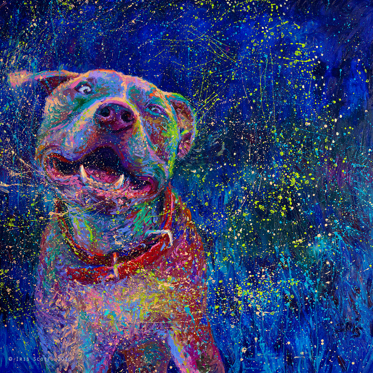 Shakin 39 dogs iris scott for Dog painting artist