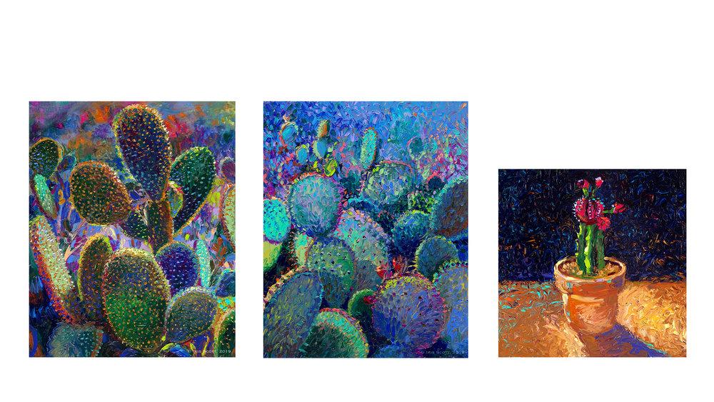Cacti-Post.jpg