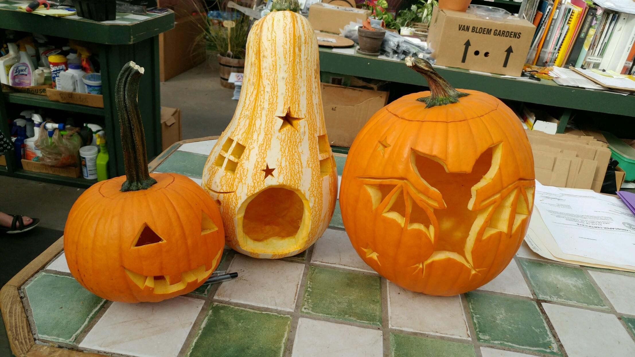 Easy pumpkin carving u stanley s greenhouse