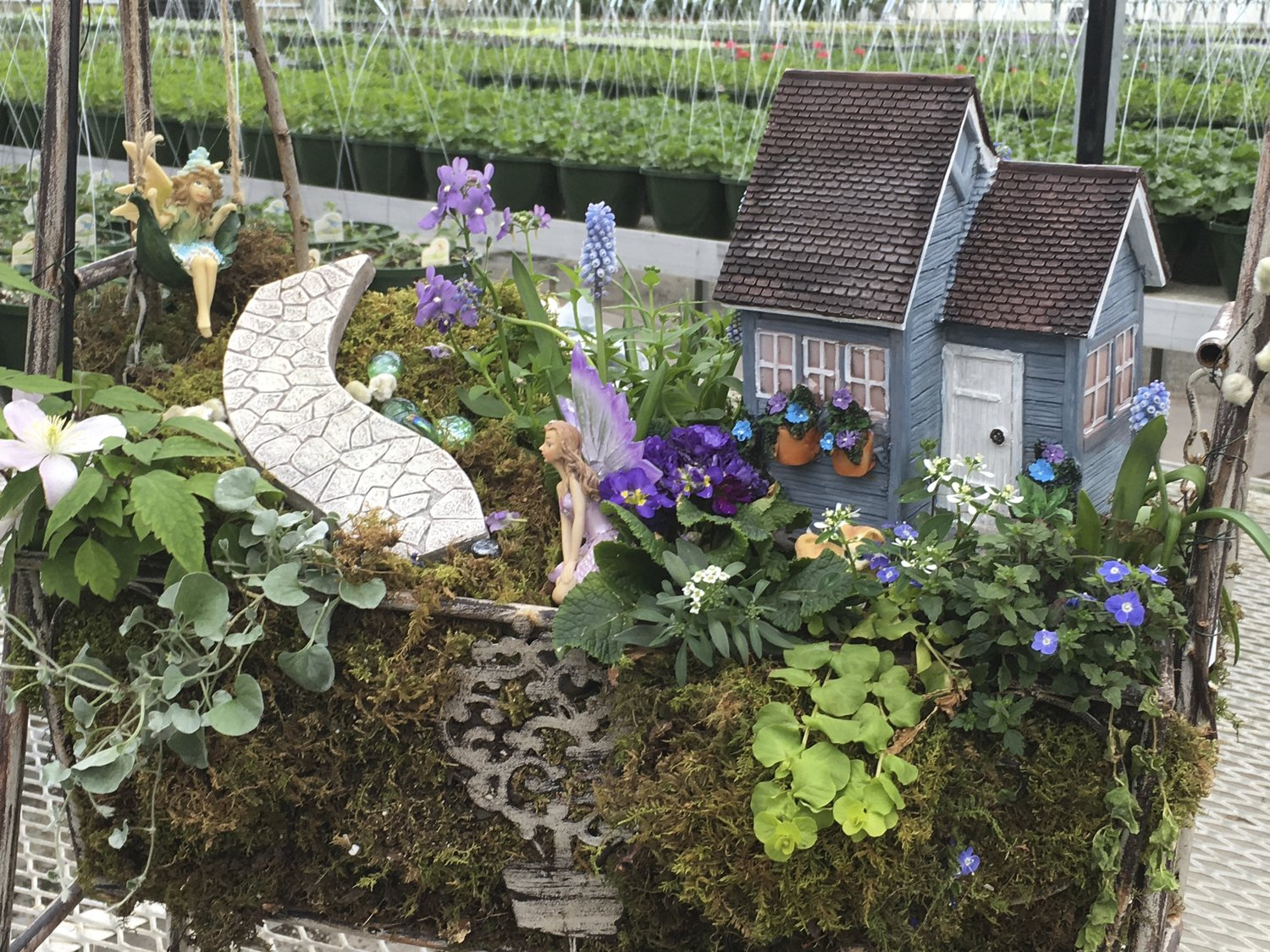 How To Create Your Own Fairy Garden Stanley S Greenhouse