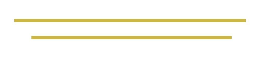 Lines+1ai-01.jpg