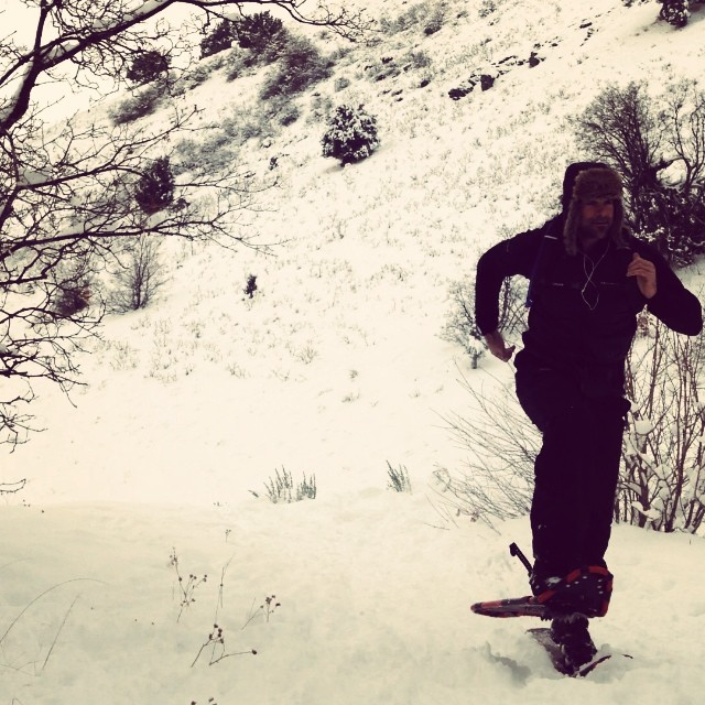 Hill sprints! @ckchlarson#cvsc #PoseShoeing #HumanIditarod