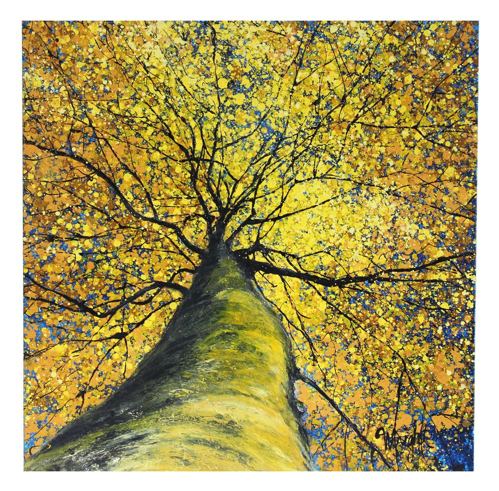 "Yellow Canopy   36x36"""