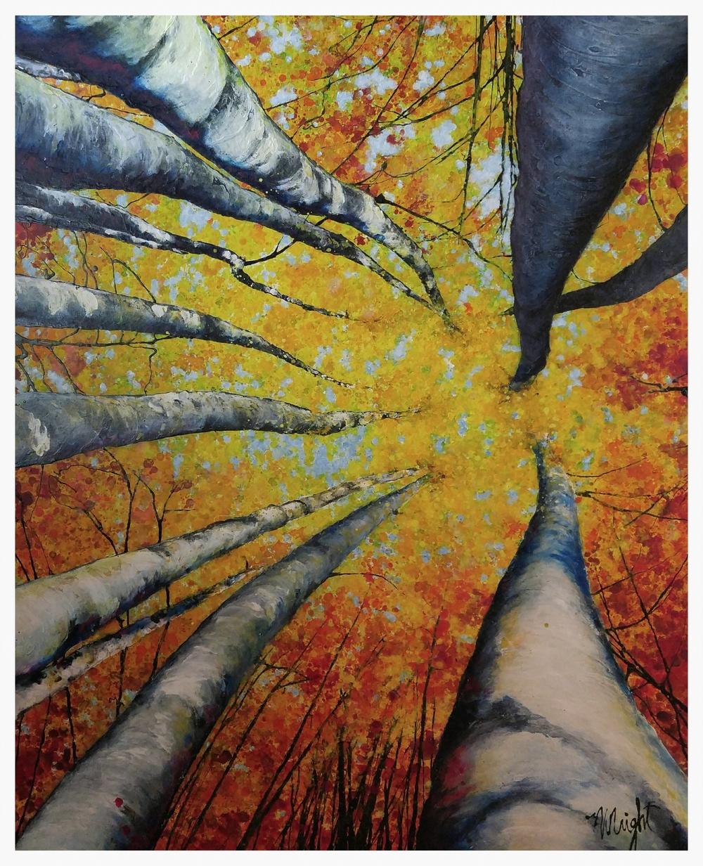 Fall in Beaver Creek   6x4'