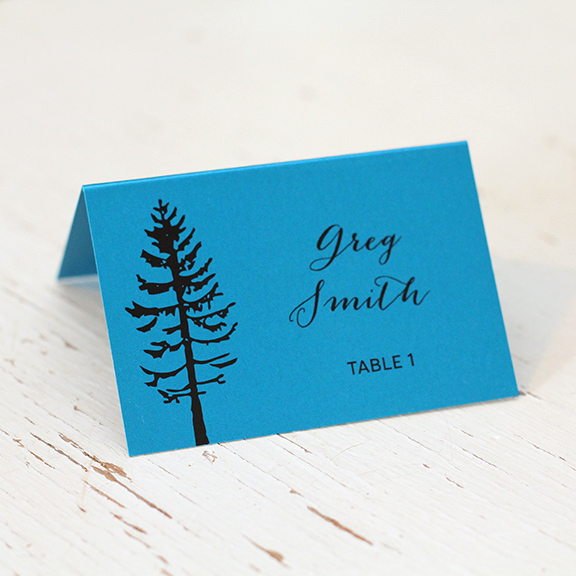 Wedding_Stationery_Place_Card_Escort_Invitation_Calgary_Banff_Canmore_Edmonton_Delivery_Blue_Paper_Tree_SM.jpg