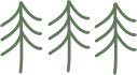 white pines.jpg